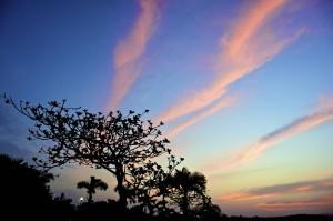 沖縄海岸沿いの夜明け